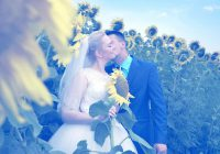 sunflower lover's wedding
